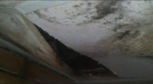 Water Damage Restoration Company Colorado Springs CO